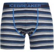 Icebreaker Anatomica  M