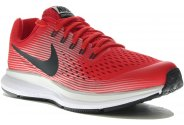 Nike Air Zoom Pegasus 34 GS